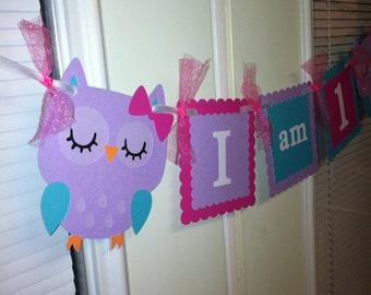 Owl highchair banner, Owl birthday banner, Owl decorations, Owl I am one banner, I am one banner