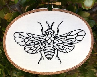 """Fly hand embroidery hoop art. Hand stained 3"""" x 5"""" oval hoop. Home decor. Bug art."""