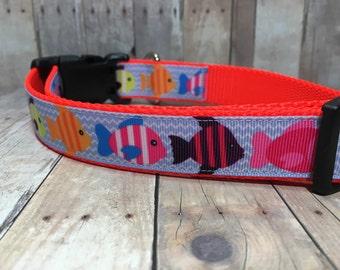 "The Crawford | Designer 1"" Width Dog Collar | CupcakePups Collars | Colorful Fish - Medium/Large Dog Collar"