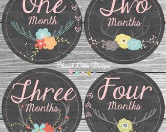 DIGITAL Monthly Baby Stickers Girl, Milestone Stickers, Month to Month Stickers Girl, Chalkboard, Antler, DIY Printable,  #16