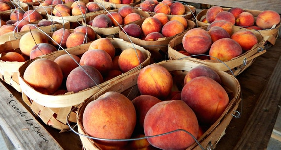 BASKET of PEACHES ~ Fresh Fruit ~ Farmer's Market ~ Roadside Market ~ Kitchen Wall Art ~ Restaurant Art ~ Harvest Time ~ Food Photography