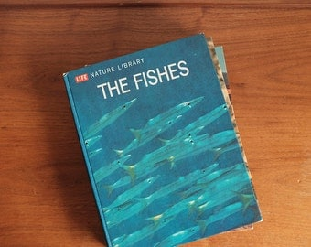 1963 Vintage LIFE Nature Library Book The Fishes.