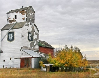 Abandoned Grain Elevator 3 - Wildlife Animal Nature Photography from Alberta, Canada