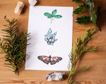 Crystal Butterfly Wintergreen Watercolor Pen and Ink Art Print