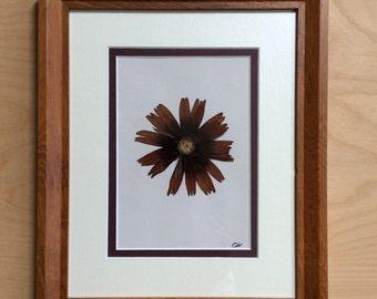 Framed Original Pressed Flower Artwork - Simply Rudbeckia