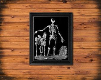Skeleton Man and Horse Art Print, Goth Art Print Halloween Wall Art, Black and White Art Print, Halloween Decor Skeleton BW2