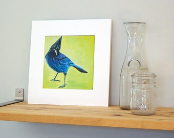 12x12 Steller's Jay Art with White Mat - Ready to Frame Bird Print from Original Acrylic Painting