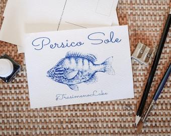 Handmade cyanotype postcards (6 items - series A)