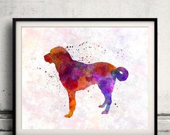 Anatolian Shepherd Dog 01 in watercolor - Fine Art Print Poster Decor Home Watercolor Illustration Dog - SKU 1483
