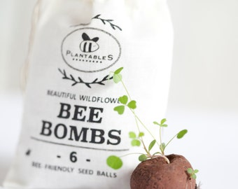 Bee Bombs - wildflower seed balls for pollinators, bag of 6