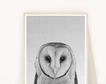 Woodland Nursery Decor, Owl, Owl Decor, Printable Owl, Nursery Wall Art, Owl Print, owl Art, Printable  Art,  Instant Download, Wall Decor