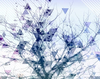 Triangulate -- Limited Edition Matted Print