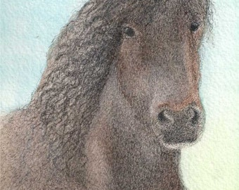 ACEO King of the Herd Wild Mustang Horse ATC
