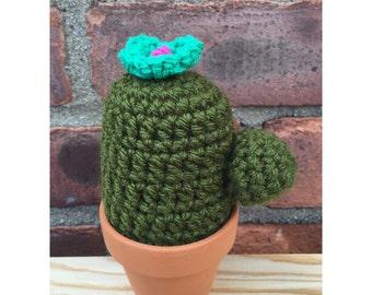 Crochet Cactus, Crochet Succulent, Crochet Plant, Yarn Cactus, Cactus, Yarn Plant, Fiber Art || Notocactus w/ arm & teal flower