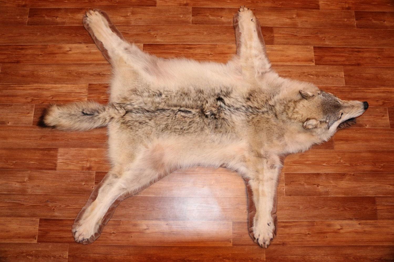 Siberian Gray Wolf Taxidermy Fur Rug Carpet Skin Pelt