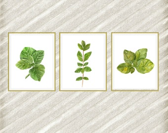 "Watercolor herbs print: ""HERB POSTERS"" Kitchen Wall Decor botanical kitchen prints Kitchen Printable Herb Kitchen Herb kitchen art set of 3"