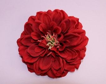 Scarlet Red Dahlia