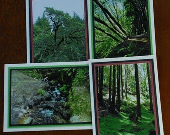 Set of 4 blank greeting cards-Tranquil forests