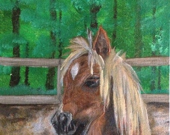 "Original Miniature Horse Painting ""Yo Yo the Miniature Horse"" 8x10"