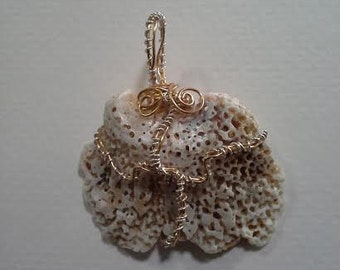 CD #27 Seashell Twisted Wire