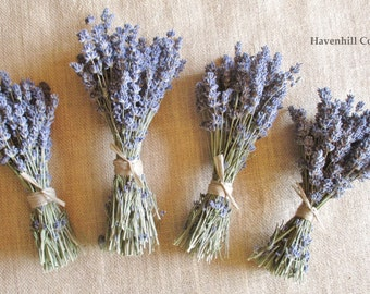 Dried Lavender Bunches - 4 Dried English Lavender Bunches - Dried Lavender Bundles - Dried Lavender Bouquets - Natural Dried Lavender Stems