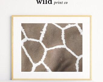 Giraffe Print, Giraffe Wall Art, Animal Print, Giraffe Photography, Modern Wall Art, Safari African Animal Print, Living Room Wall Art