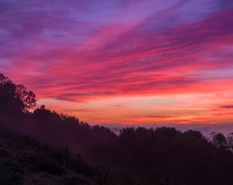 Digital Download: Pink sunrise photo