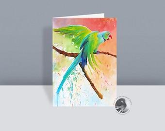 Robin Redbreast - Bird Greetings Card