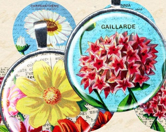 Bottle Cap Images, FRENCH FLOWERS, 1 inch round instant download, 25 mm circles, 4x6 inch printables for bezels, pendants, piddix 1068