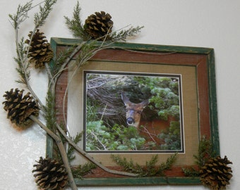Photograph Rustic Deer Picture 234
