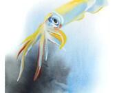 Squid Watercolor Art Prin...