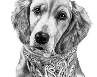 Custom Pet Portrait Dog Sketch From Photo Gift Idea