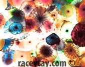 Pastel Decor, Abstract, Modern, Colorful Photography, Pink, Purple, Blue, Yellow, Rainbow