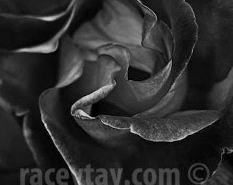Anti Valentine Decor - Black Rose Photo - Gothic Dark Gray Wall Art - Flower Photography