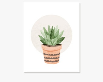 how to draw succulents reddit