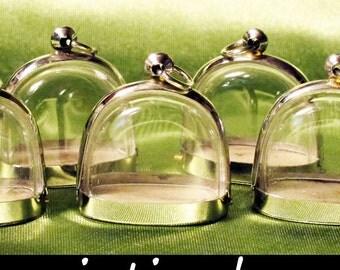 Japanese Moss Ball, Plant Jewelry, Fillable Phial, Terrarium Kit, Snow Dome, Terrarium Necklace, Terrarium Garden, Craft Supplies, Reliquary