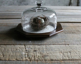Vintage Glass Dome with Wooden Base