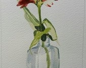 Red Zinnia in Bottle 1, original watercolor on archival paper, reds, greens, transparent glass painting, Michigan artist, woman artist