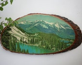 Vintage 1970s 1980s // Real Log Section with Mountain Lake Print