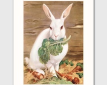 "Rabbit Art Print w/Mat (White Rabbit Nursery Decor, Bunny Lover Gift) Matted Farm Animals Print --- ""Snow Queen"""