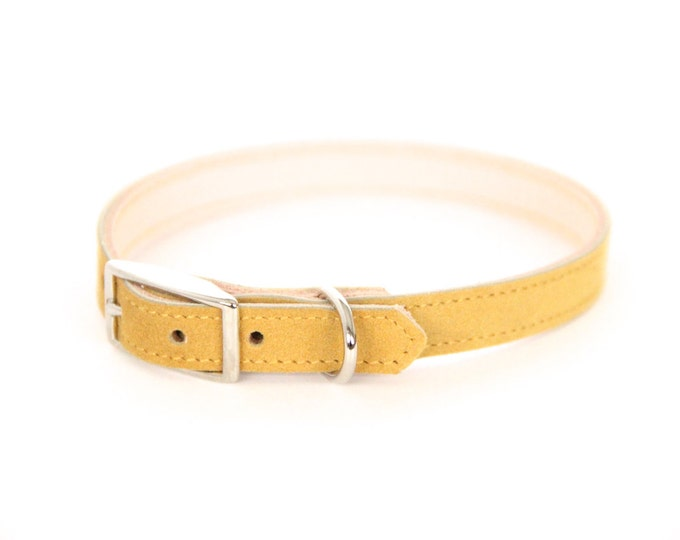 Cat or Small Dog Collar // Mustard // Optional ID Tag