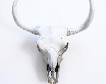 Painted Cow Skull, Faux Taxidermy, Skull, Animal Skull, Bison Skull, Taxidermy, Skulls, Animal Skulls, Cow Skull, Gold Animal Skull, Hodi,