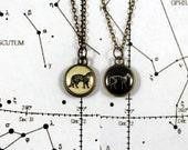 Schrödinger's Cat Double Sided Necklace