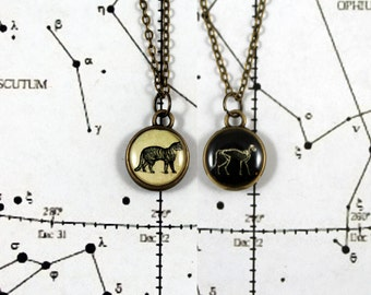 Schrödinger's Cat Double Sided Necklace