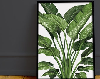 A4 'Bird of Paradise' geometric art print - original drawing