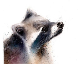 RACCOON ART PRINT - raccoon painting, watercolor raccoon, raccoon print, raccoon wall art, animal lover gift, wildlife art print, racoon art