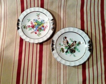 Pair of Small Bird Dishes - Silver Trim & Accents - Catch all Dish - Wall Hanging - Miniature Hanging Bowls or Plates - Bird Collector Decor