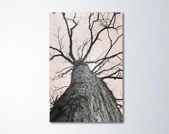 Tree Canvas Art, Forest Canvas Photography, Fine Art Photography, Large Art, Neutral Canvas Art, Large Vertical Art, Large Tree Art