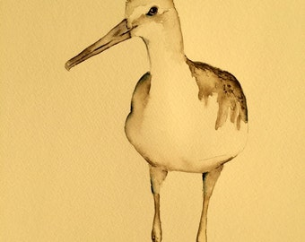 watercolor bird painting bird art original watercolor Sandpiper