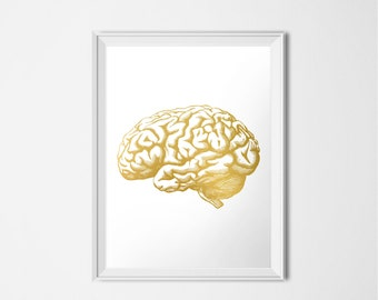 Gold Brain Print, Human Brain, Medical Printable, Anatomy Printable, Gold Print, Instant Download, Printable Art, 16x20 Poster, Weird Art